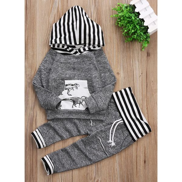 Boys' Casual Animal Daily Long Sleeve Clothing Sets (30165341928) 3